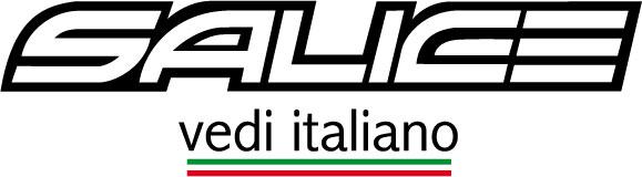 Salice Vedi Italiano