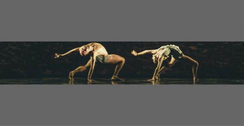 Reale balletto delle Fiandre