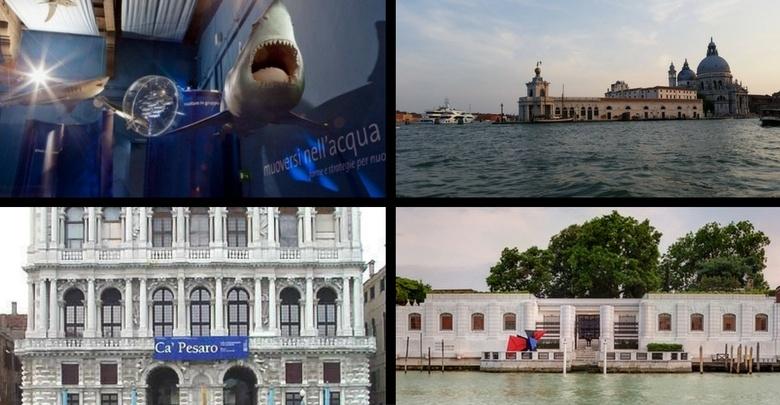 Immagine di alcuni musei aderenti