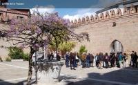Ca' Foscari Tour - Regata Storica