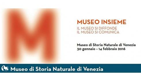 Museo insieme